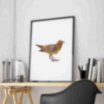 bird-shop
